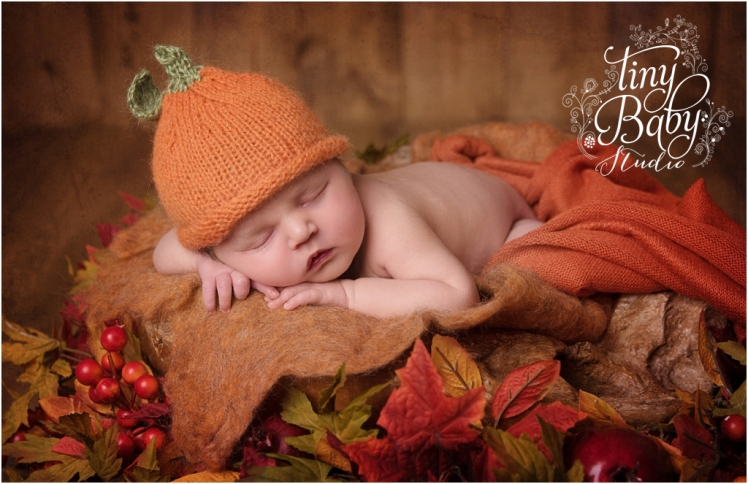 tiny-baby-studio-newcastle-newborn-photographer-autumnal-pumpkin
