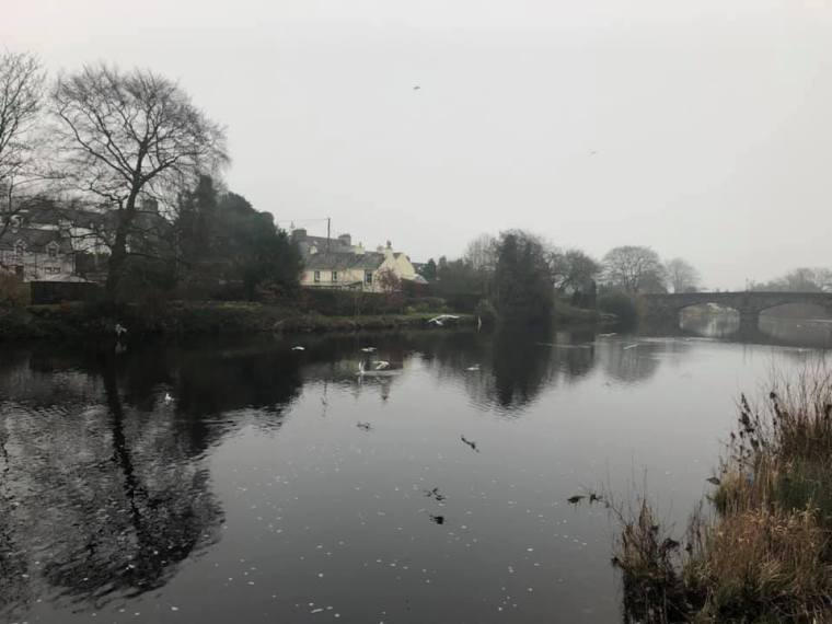 The view from our cottage in Newton Stewart